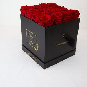 Forever Black Alix Forever Roses red