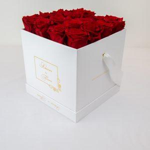 Forever White Alix Forever Roses red