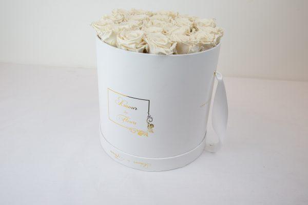 Forever White Aurora Roses lemon