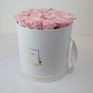 Forever White Aurora Roses pink