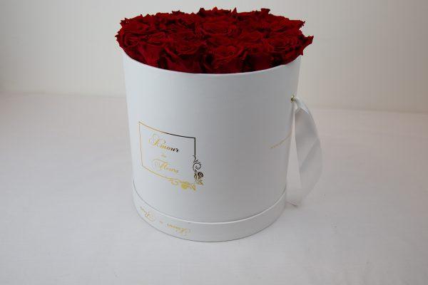 Forever White Aurora Roses red