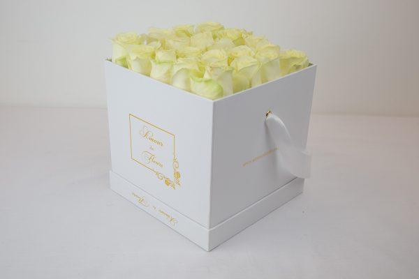 Fresh Water white Alix Roses lemon