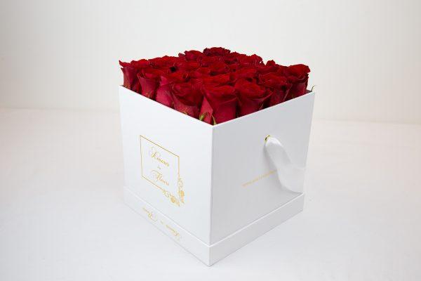 Fresh Water white Alix Roses red