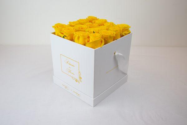 Fresh Water white Alix Roses yellow
