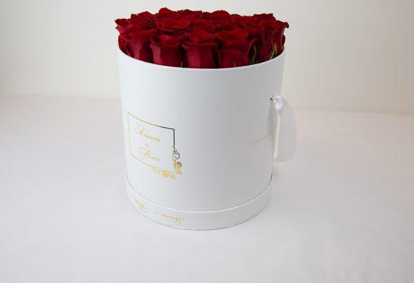 Fresh Water White Aurora Roses red