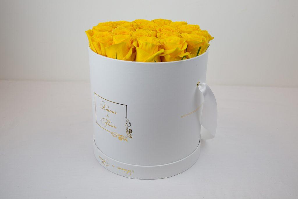 Fresh Water White Aurora Roses yellow