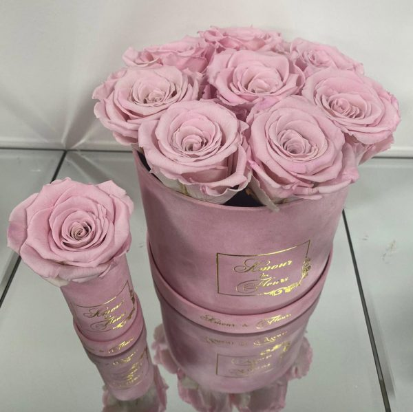 luxe pink forever rose collection